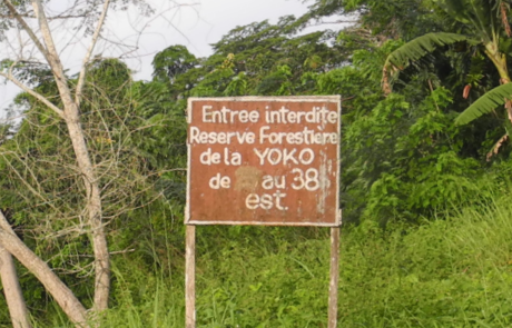 Welcome sign found at the location of the Yoko reserve